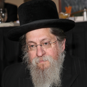 Rabbi Eliezer Dovid Rapaport